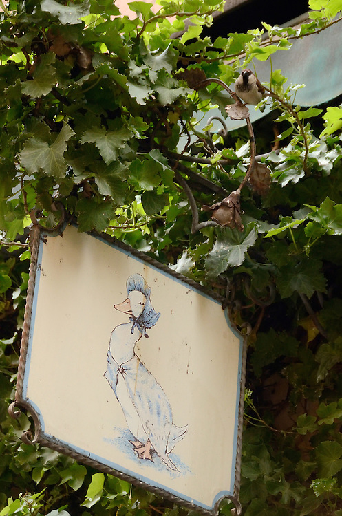 Mother goose on the sign for a pub in Riva del Garda, Italy.