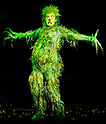 """The Grinch played by Stefan Karl performs in """"Dr. Seuss' How The Grinch Stole Christmas! The Musical,"""" which opened at the Hanover Theatre for the Performing Arts on Friday, Nov. 6, 2015."""