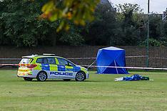 2021_10_13_Fatally_Stabbing_Twickenham_PMN