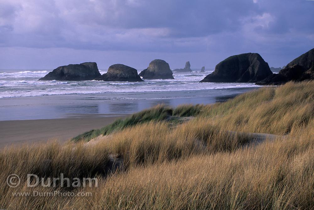 A series of irregular basalt rock projections along Cannon Beach on the Oregon Coast.