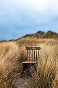 """Abandoned Wooden Chair on Bull Island, Dublin This mage can be licensed via Millennium Images. Contact me for more details, or email mail@milim.com For prints, contact me, or click """"add to cart"""" to some standard print options."""
