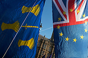 Anti Brexit pro Europe demonstrators protest waving EU flags, Union Jack flags and the flag of Cheshire in Westminster opposite Parliament as MPs debate and vote on amendments to the withdrawal agreement plans on 14th February 2019 in London, England, United Kingdom.