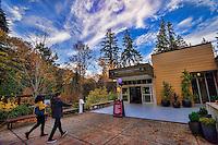 South Bellevue Community Center, Eastgate Park