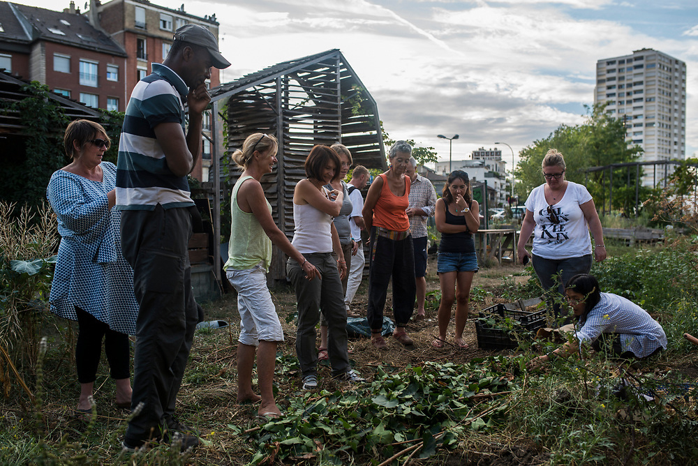One of the members of the Agrocite gives a workshop about permaculture during a Saturday afternoon in the common plot of the garden, Colombes, France, September 2016.