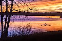 Sunrise over Cheery Creek Reservoir at Cherry Creek State Park, Colorado.