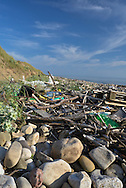Drift wood and rubbish accumulated on the beach at Kenfig Nature Reserve, South Wales