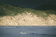 Coast in Doughboy Bay, The Southern Circuit, Stewart Island / Rakiura, New Zealand Ⓒ Davis Ulands | davisulands.com