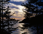 Sun setting beyond Cape Falcon and silhouetted by Sitka spruce, Oswald West State Park, Oregon.