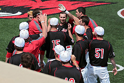 26 April 2014:    Paul DeJong who hits a home run over the fence in right field, rounds the bases and celebrates with the rest of the team near the dugout during an NCAA Division 1 Missouri Valley Conference (MVC) Baseball game between the Southern Illinois Salukis and the Illinois State Redbirds in Duffy Bass Field, Normal IL
