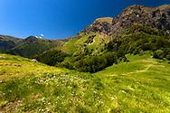 Springtime in Balkan Mountains
