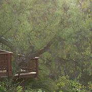 Lush green canyon and small wooden deck shot through a driving rain storm.