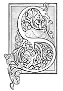 An initial S, illuminated with foliage of the Northumbrian type, from a German manuscript of the twelfth century From the book ' Illuminated manuscripts in classical and mediaeval times : their art and their technique ' by Middleton, J. H. (John Henry), 1846-1896 Published in 1892