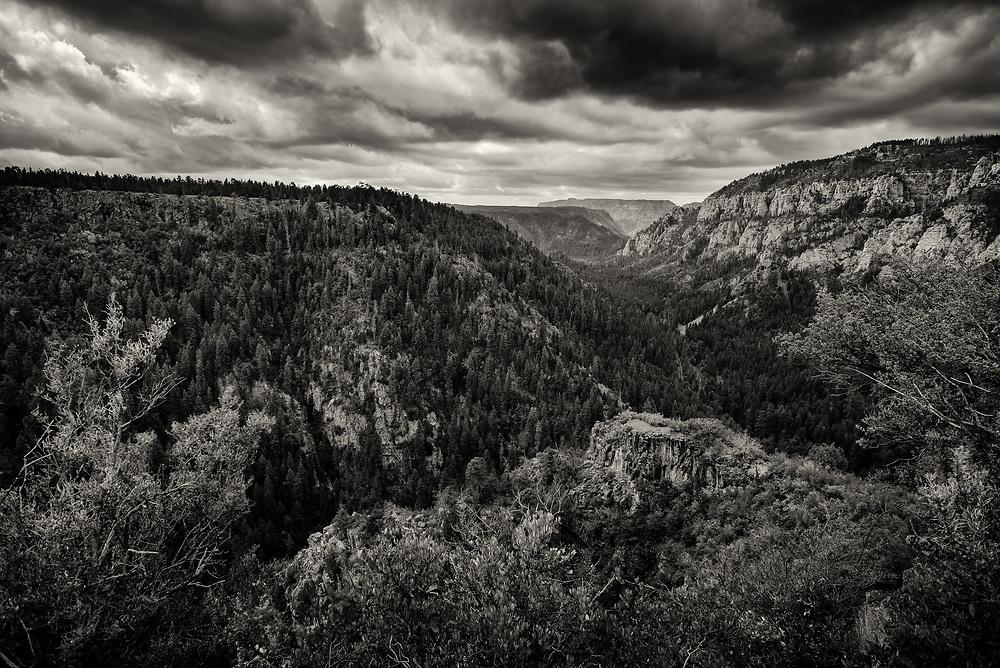 Oak Creek Canyon, AZ.