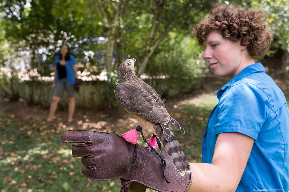 Belize Raptor Center