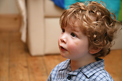Portrait of baby boy gazing,