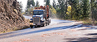 A logging truck carrys a load of large logs on a highway in Klickitat County, WA, USA.