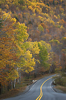 Country road in autumn winding through Grafton Notch State Park Maine USA