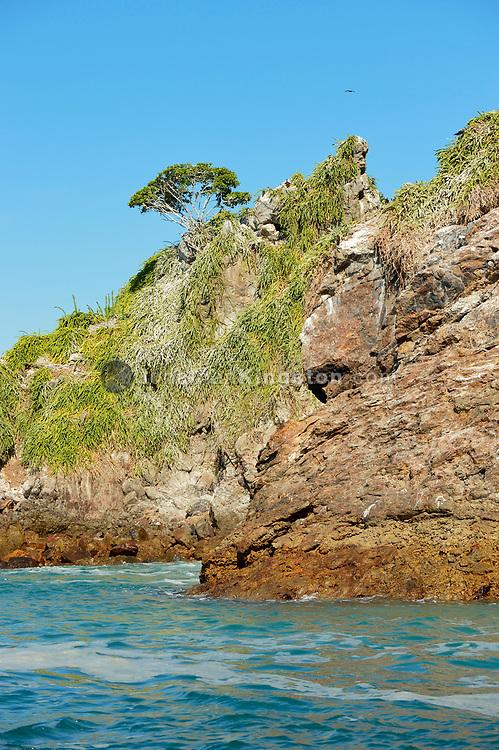 The rocky shoreline of Bona Island, off the pacific coast of Panama.