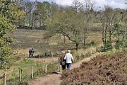Nederland, Overasselt, 17-4-2017Wandelaars genieten van het mooie lenteweer in natuurgebied de Hatertse Vennen van staatsbosbeheer. Het is een vennengebied wat onlangs is uitgedund om het grondwaterpeil te laten stijgen.Foto: Flip Franssen