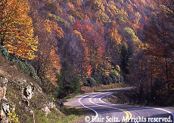 Windy roads surrounded by autumn foliage, Allegheny National Forest, Forest Co., PA