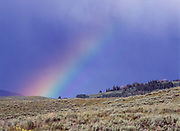Rainbow over foothills of the Gravelly Range east of the Ruby River, Beaverhead-Deerlodge National Forest, Montana.