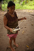 Amerindian Woman Spinning Cotton<br /> Apoteri Amerindian Village<br /> Rupununi<br /> GUYANA<br /> South America