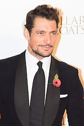 """Battersea, London, November 3rd 2016.  Celebrities and their dogs attend The Evolution at Battersea Park to attend The Battersea Dogs and Cats Home """"Collars and Coats Ball"""". PICTURED: David Gandy"""