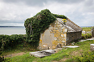 Ivy-covered tomb at St. Macreehy's Church, Liscannor, County Clare