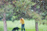 Woman with dog through rainy windshield<br />