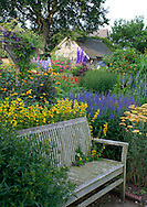 A weathered teak bench surrounded by borders of salvia and achillea atWollerton Old Hall, Market Drayton, Shropshire, UK
