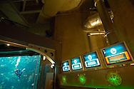 "USA, Vereinigte Staaten Von Amerika: Florida Aquarium, Übergang vom Korallenriff zur Galerie ""Sea Hunt"", Tampa, Florida | USA, United States Of America: Florida Aquarium, passage from coral reef to gallery ""Sea Hunt"", Tampa, Florida |"