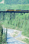 Alaska, Denali National Park. Railroad crossing Riley Creek trestle.