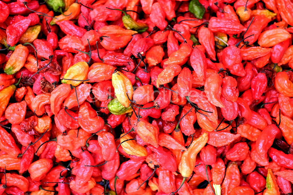 Dried red chillies for sale Pazun Taung market on 19th March 2016 in Yangon, Myanmar. A large variety of local products are available for sale in fresh markets all over Yangon, all being sold on small individual stalls