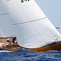 JOANNE - A15