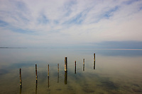 "Fence at lagoon ""Etang du Vaccares"", Camargue, France"