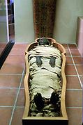 Ancient Egyptian mummy in wrappings. Vatican Museum