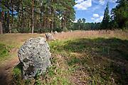 Odry, 2011-07-05. Cmentarzysko kultury wielobarskiej  w Odrach obejmuje 9 kręgów kamiennych i ok. 30 kurhanów, które są rozmieszczone na terenie rezerwatu Kamienne Kręgi w pobliżu wsi Odry.