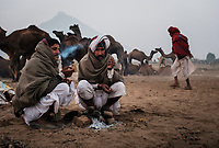 PUSHKAR, INDIA - CIRCA NOVEMBER 2016: Camel herders smoking early morning in the Pushkar Camel Fair grounds. It is one of the world's largest camel fairs. Apart from the buying and selling of livestock, it has become an important tourist attraction.