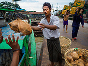22 NOVEMBER 2017 - YANGON, MYANMAR: Workers unload coconuts from a barge docked on the Twante Canal in Yangon. Myanmar's road system lags behind its neighbors in Southeast Asia and a lot of cargo is still moved by ships and barges.    PHOTO BY JACK KURTZ