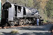 Hammond Lumber Company engine