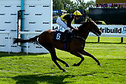 Lady Phyllis ridden by Charlie Bennett trained by Michael Attwater in The ITEC EPF Novice Median Auction Stakes (Class 5) - Mandatory by-line: Robbie Stephenson/JMP - 04/09/2019 - PR - Bath Racecourse - Bath, England - Bath Races