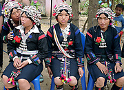 Akha women dressed in their traditional clothing made from handspun indigo dyed cotton at a wedding in Ban Lang Pa village, Luang Namtha province, Lao PDR. One of the most ethnically diverse countries in Southeast Asia, Laos has 49 officially recognised ethnic groups although there are many more self-identified and sub groups. These groups are distinguished by their own customs, beliefs and rituals.