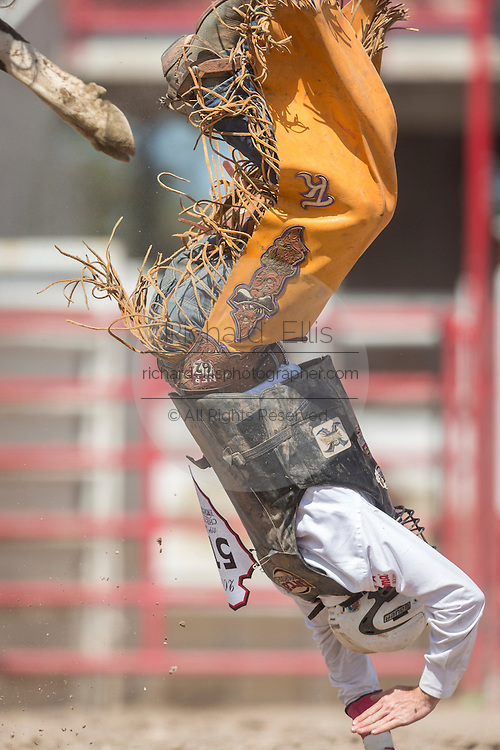 Bull rider Trevor Kastner of Ardmore, Oklahoma flies upside down off Comfortably Numb at the Cheyenne Frontier Days rodeo at Frontier Park Arena July 24, 2015 in Cheyenne, Wyoming. Frontier Days celebrates the cowboy traditions of the west with a rodeo, parade and fair.