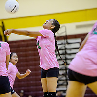 Newcomb Skyhawk Shoshuna Jones (4) bumps up a serve from the Tohatchi Cougars Tuesday at Tohatchi High School.