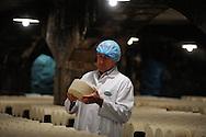 Dans les caves de Roquefort Société, Jacky Carles, maître affineur