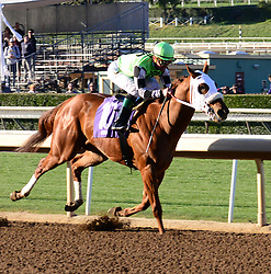 February 25, 2018 - Arcadia, CA, USA - KARMIC AFFINITY with jockey  KENT J. DESORMEAUX finish more than 4 lengths ahead of the pack during the 8th race at Santa Anita Race Track, Arcadia, California, USA, February 24, 2018...Credit Image  cr  Scott Mitchell/ZUMA Press (Credit Image: © Scott Mitchell via ZUMA Wire)