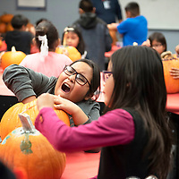 Tyren uses her hand to clean out a pumpkin for carving  and reacts by calling the insides slimy Wednesday afternoon at the Office of Diné Youth in Fort Defiance to celebrate Halloween. Kindergarten through third grade painted pumpkins and fourth graders and up carved pumpkins.