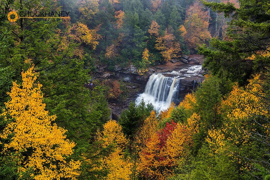 Blackwater Falls in autumn in Blackwater Falls State Park in Davis,  West Virginia, USA