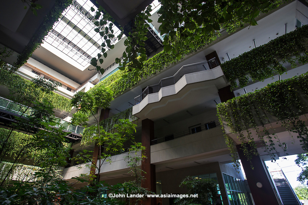 """Vertical garden green wall at Kasetsart University Faculty of Economics.  Fans of vertical gardens or green walls say governments should provide incentives for green initiatives as they save energy consumption by reducing heat in buildings.  Unfortunately, high maintenance costs, expensive building material costs and lack of government support, means they are not widely used and are used more as """"greenwash"""" decorations rather than as a benefits to the environment."""