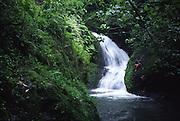 Wigmore's waterfall, Rarotonga, Cook Islands<br />